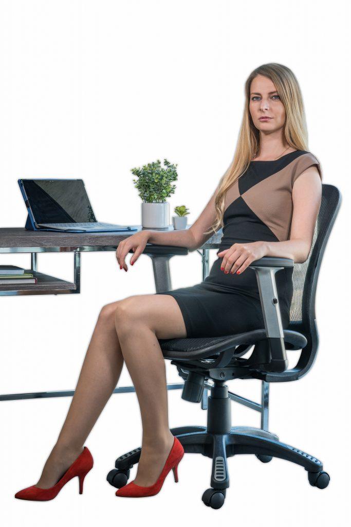 Lumbar Support ErgoMax Chair