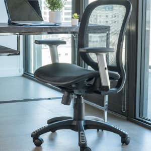 Lumbar Support ErgoMax Chair